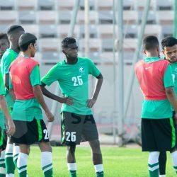 إعلان قائمة المنتخب الوطني لمعسكر الرياض استعدادًا لكأس أمم آسيا