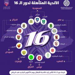 تصميم الأندية المتأهلة لدور الـ 16