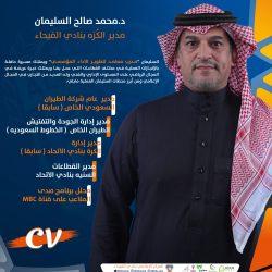 محمد السليمان سيرة ذاتية