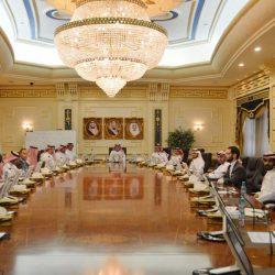 دوري كأس الأمير محمد بن سلمان للمحترفين : الحزم يفوز على الفتح بهدف