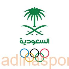 لجنة الانتخابات تعلن القائمة النهائية المرشحة لرئاسة وعضوية اللجنة الأولمبية